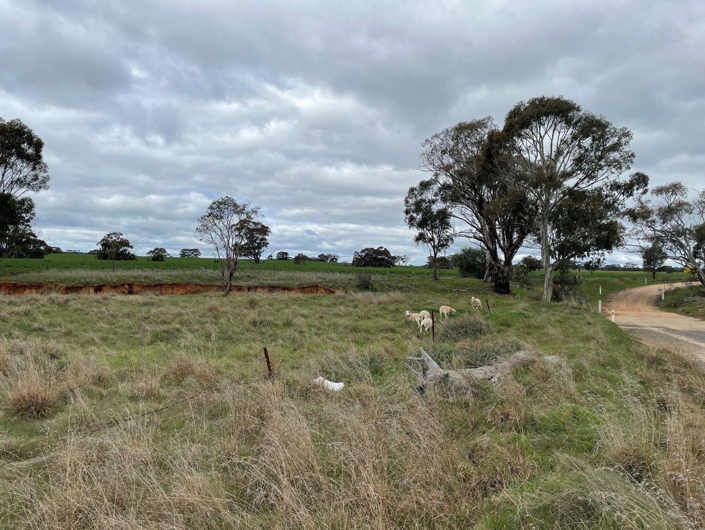 50E Nine Mile  Mine Road, Nine Mile VIC 3518, Image 2