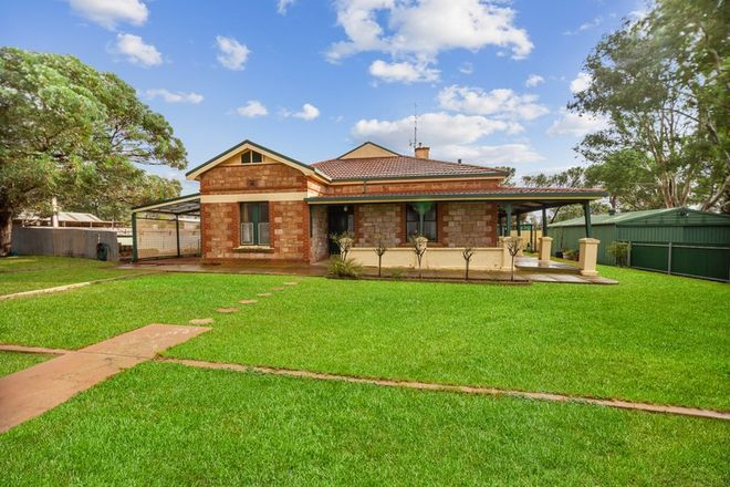 Picture of 128 Shadwell Gap Road, SNOWTOWN SA 5520