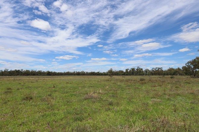 Picture of 10491 Lachlan Valley Way, CONDOBOLIN NSW 2877