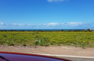 Picture of Lot 43 10 Dolphin Drive, Marion Bay SA 5575