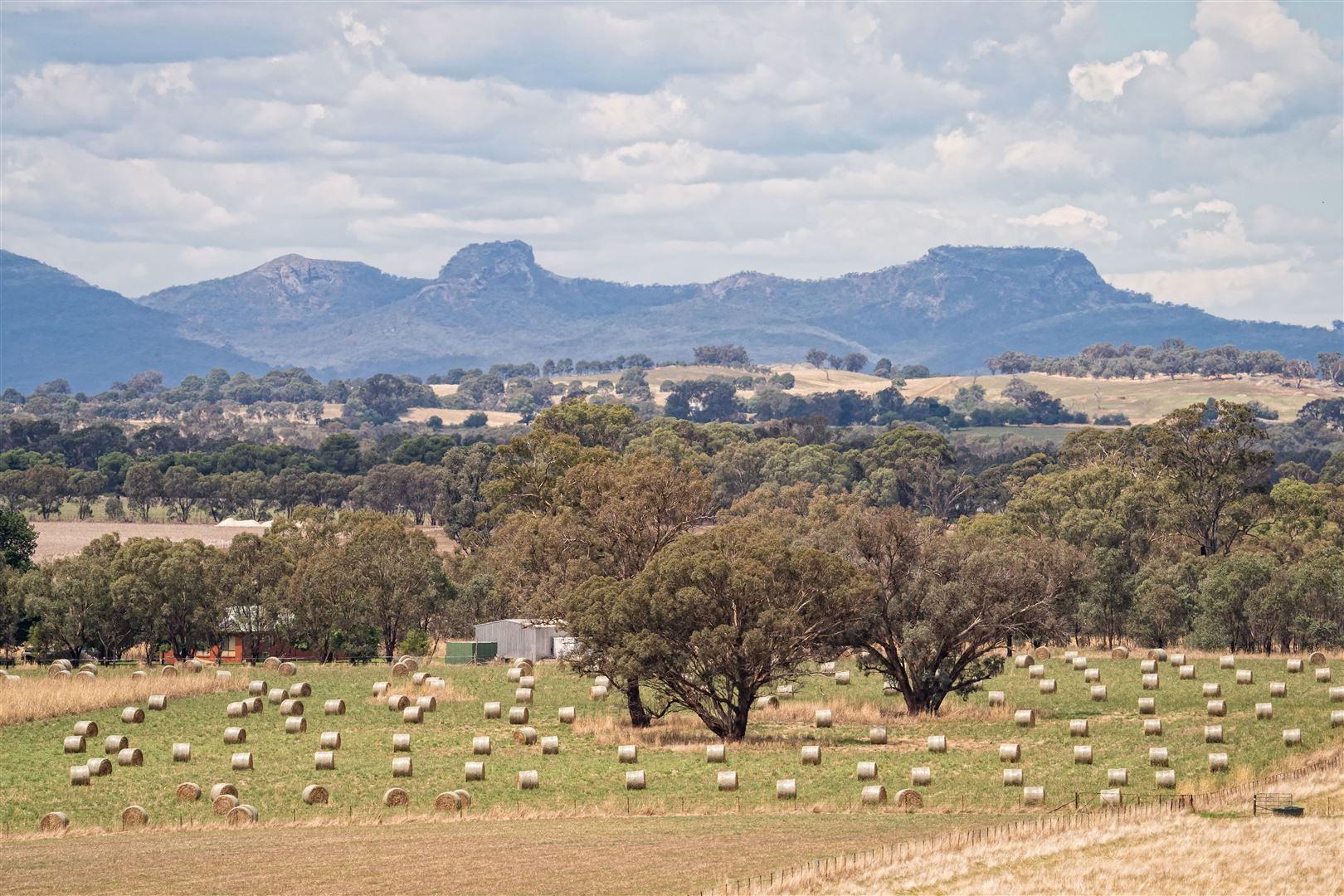 Range View 228 Stony Park Road, Jindera NSW 2642, Image 0