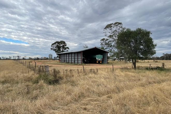 Picture of GILGANDRA NSW 2827