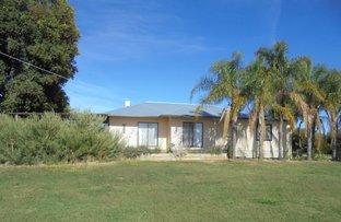 Picture of 220 Darwin Road, Robinvale VIC 3549