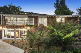 Picture of 62 Prahran Avenue, Frenchs Forest NSW 2086