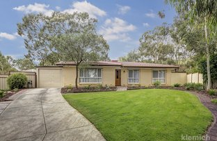 Picture of 13 Bluegum Court, Athelstone SA 5076