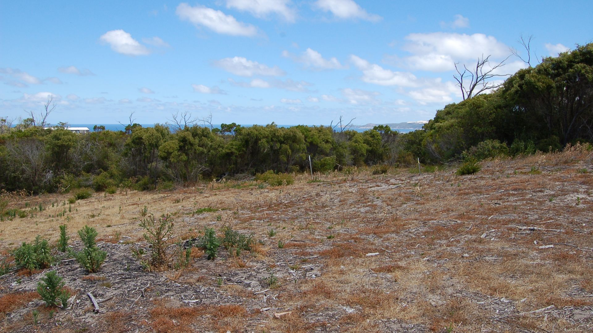 Lot 126 Wellstead Road South, Bremer Bay WA 6338, Image 2