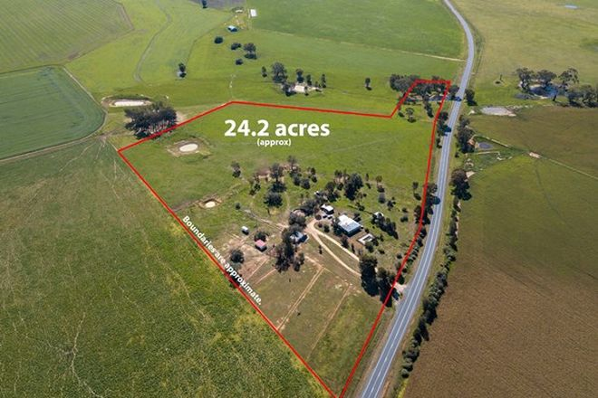 Picture of 3899 Urana Rd, BURRUMBUTTOCK NSW 2642
