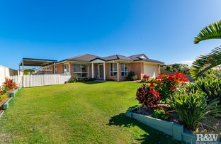 Picture of 3 Malva Court, Bongaree QLD 4507