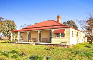 Picture of 125 Berthong Road, Cootamundra NSW 2590