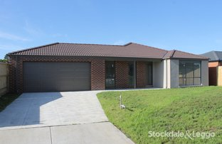 Picture of 17 Water Lily Road, Bunyip VIC 3815