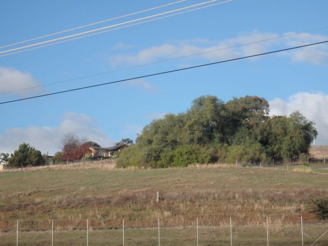 80 MOUNT STREET, South Gundagai NSW 2722, Image 0