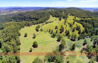 Picture of 344 Dees Road, Belbora NSW 2422