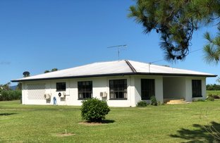 Picture of 16 Dore Rd, Murray Upper QLD 4854
