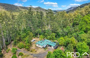Picture of 69 Turpentine Road, Warrazambil Creek NSW 2474