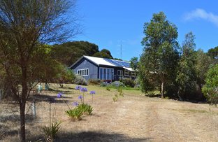 Picture of 1870 WILLSON RIVER ROAD, Porky Flat SA 5222