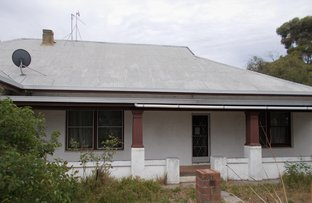Picture of 7817 Dukes Highway, Culburra SA 5261