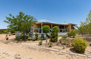 Picture of 44 Tower Road, White Hill SA 5253