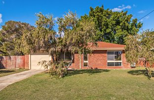Picture of 20 Willmott Dr, Cooloongup WA 6168