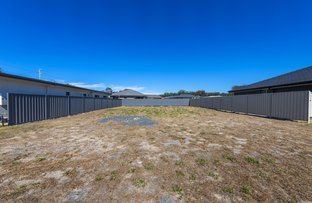 Picture of 15 Surfsea Avenue, Sandy Beach NSW 2456