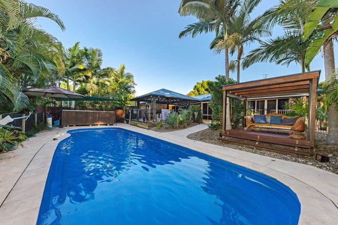 Picture of 4 Avilka Place, BEERWAH QLD 4519
