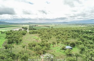Picture of 5553 Kennedy Highway, Mareeba QLD 4880