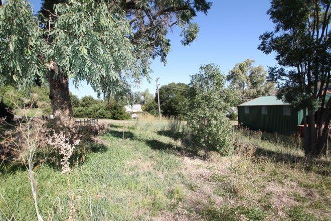 Picture of 5 Fairbairn Street, WILLOW TREE NSW 2339
