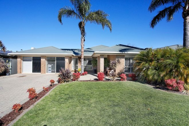 Picture of 3 Hermitage Court, NURIOOTPA SA 5355