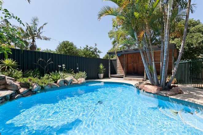 Picture of 292 Flamborough Street, DOUBLEVIEW WA 6018