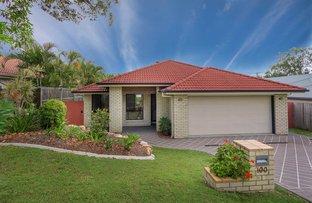 100 Brookeside Crescent, Seventeen Mile Rocks QLD 4073