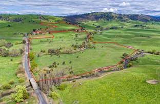 Picture of Lot 211 Lower Mannus Creek Road, Tooma NSW 2642