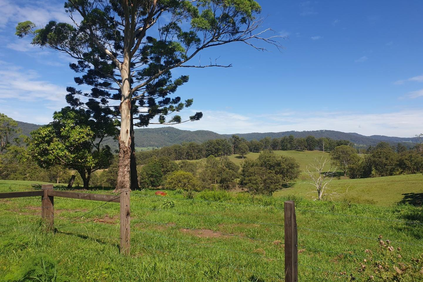85 E. J. Olley Road, Larnook NSW 2480, Image 0