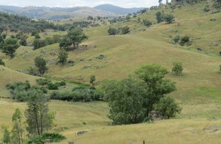 Picture of Lot 144 Tarrants Gap Road, Wyangala NSW 2808