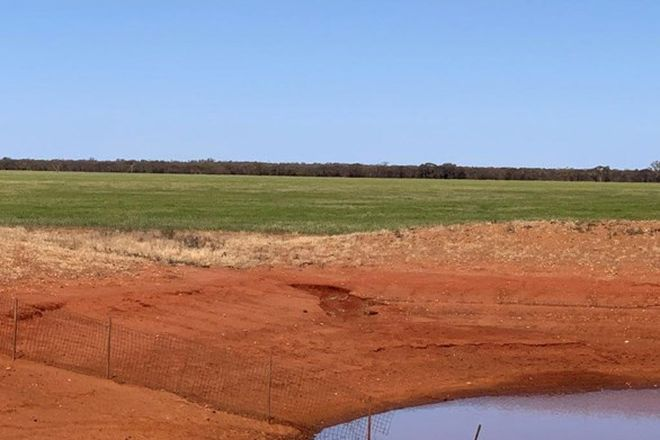 Picture of Mid Western Highway, ERIGOLIA NSW 2669