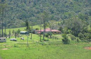 Picture of LOT 59 Hazelwood Road, Eungella QLD 4757