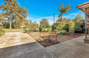 Picture of 14 Clarence Avenue, Klemzig SA 5087