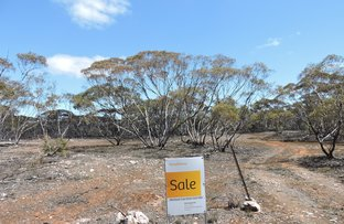 Picture of Lot 7 Hundred Line Rd, Bowhill SA 5238