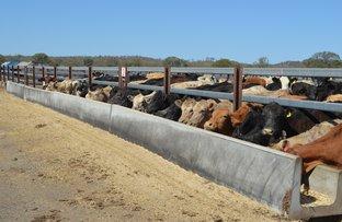Picture of 102 Crighton Road, Biddeston QLD 4401