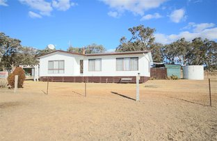 Picture of 1277 Black Swamp Road, Tenterfield NSW 2372