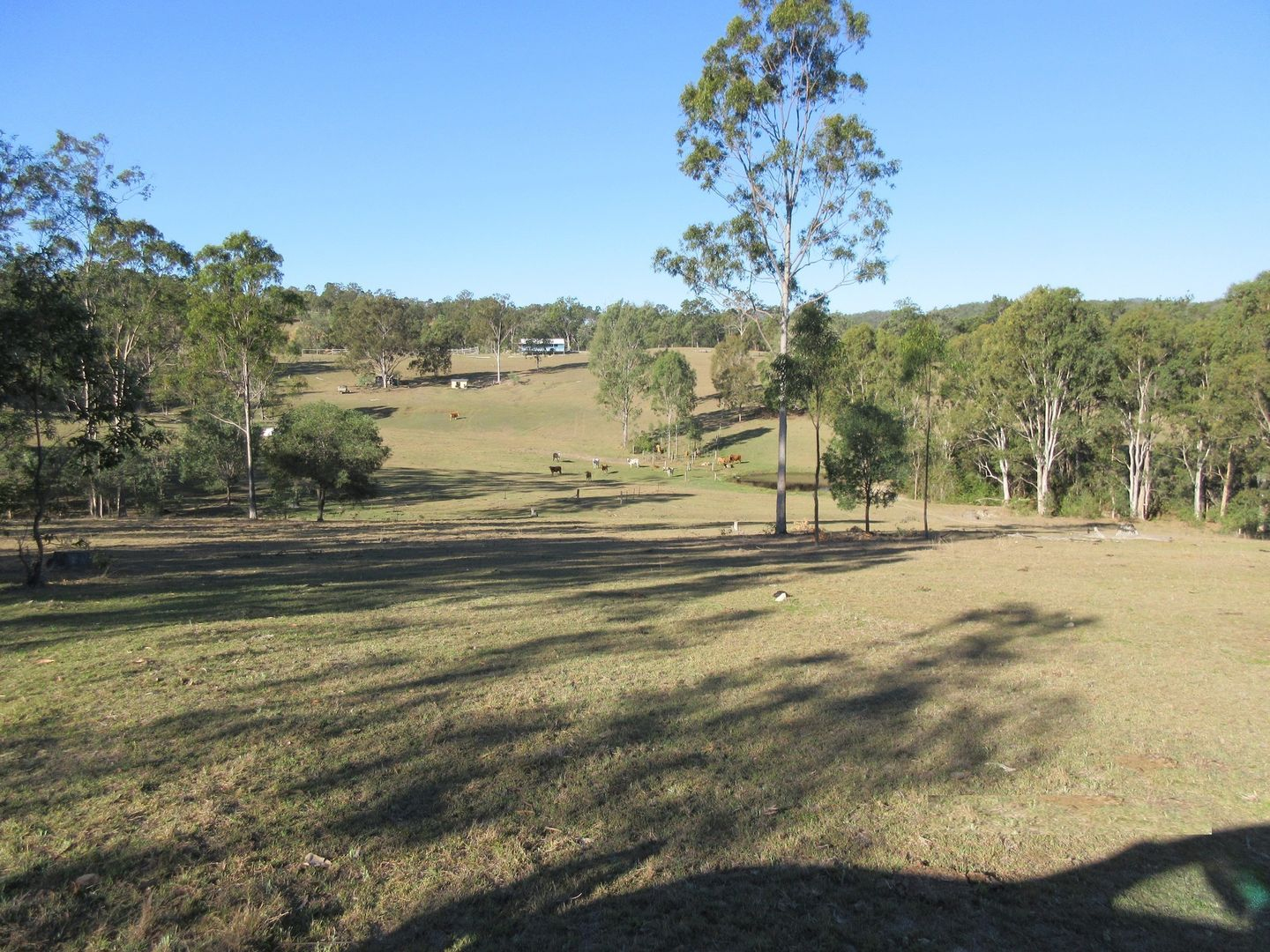551 Sandy Camp Rd, Mount Perry QLD 4671, Image 1