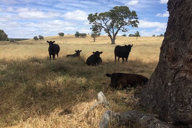 Picture of Lots 102 and 3 Matthews Road, EDEN VALLEY SA 5235