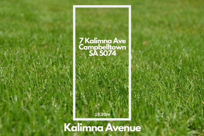 Picture of 7 Kalimna Avenue, CAMPBELLTOWN SA 5074
