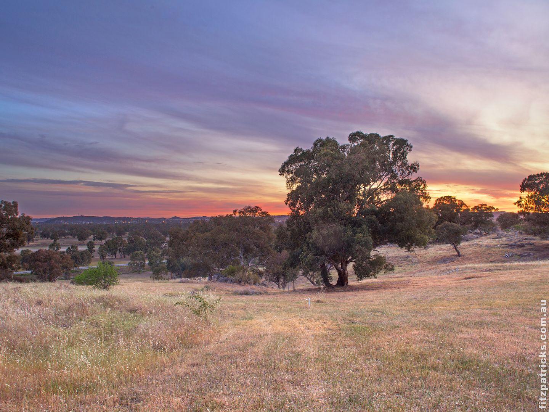 104 Bradman Drive, Boorooma NSW 2650, Image 2