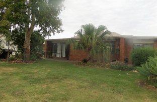 Picture of 3 Kurrajong Crescent, Goondiwindi QLD 4390