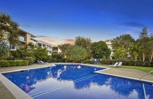 Picture of 217/64 Sickle Avenue, Hope Island QLD 4212