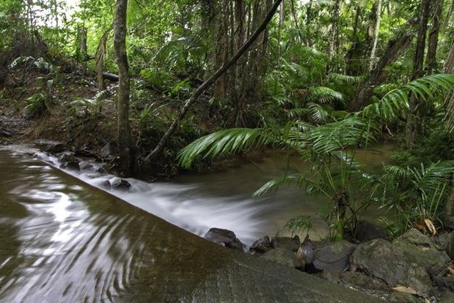 39 Real Estate Properties for Sale in Forest Creek, QLD