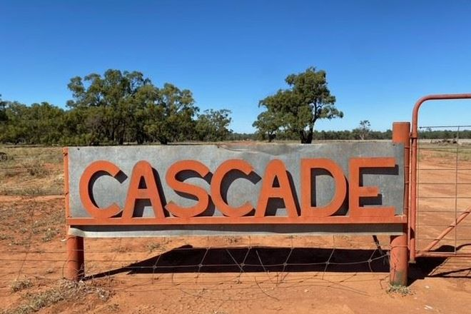 """Picture of """"Cascade"""" 5455 Mount Grace Road, HILLSTON NSW 2675"""