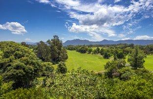 Picture of 11 Sunset Ridge Drive, Bellingen NSW 2454