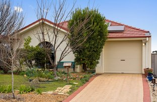 Picture of 4b Hazelwood Place, Blakeview SA 5114