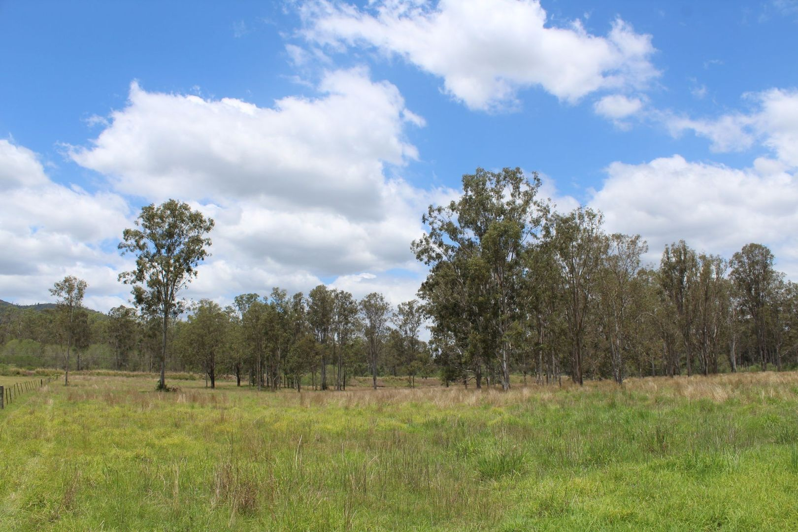 Lot 156 - 529 Netherby Road, Gundiah QLD 4650, Image 0