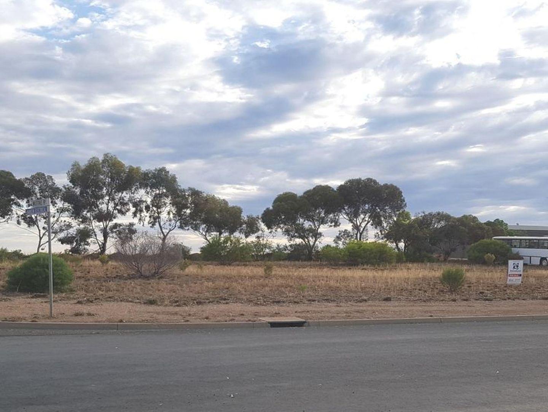 31 and 33 Smith Drive, Waikerie SA 5330, Image 0